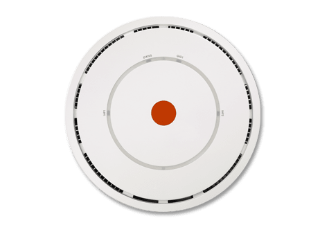 access point professionale